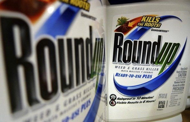 Major Verdict in Favor of Citizen Plaintiff against Monsanto