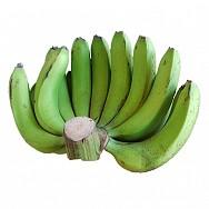 Chuối Laba canh tác hữu cơ