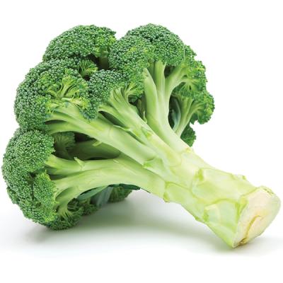 Bông cải xanh hữu cơ