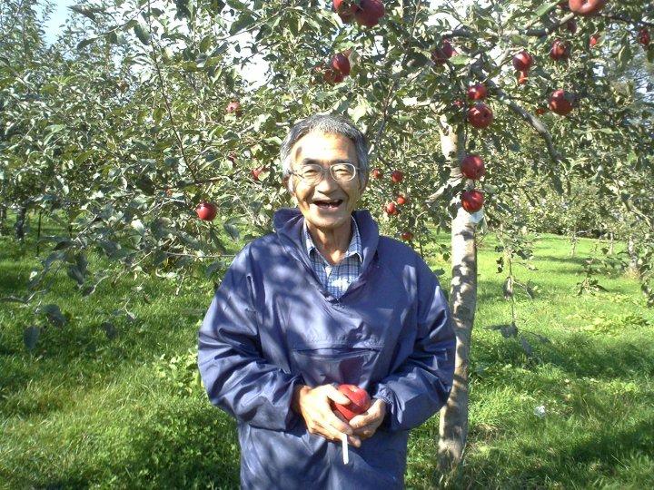 Ông Kimura tại vườn táo hoàn toàn không hóa chất của mình