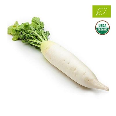 Củ cải trắng hữu cơ