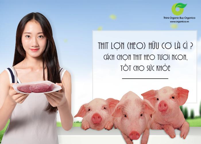 Thịt lợn (heo) hữu cơ là gì? Cách chọn thịt heo tươi ngon, tốt cho sức khỏe
