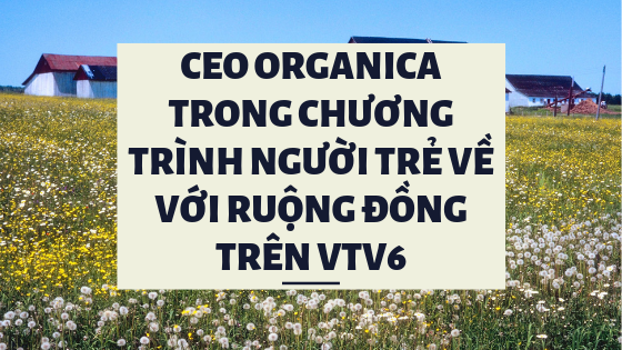 CEO Organica Phạm Phương Thảo nói về khởi nghiệp trong chuyên mục Người trẻ về với ruộng đồng VTV6