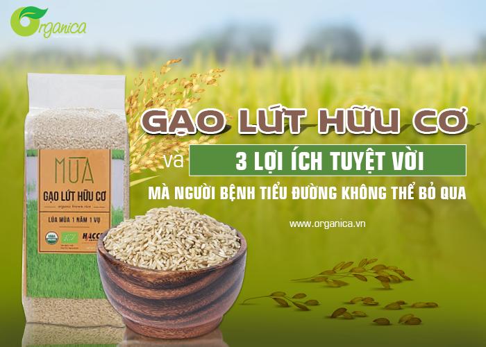 Gạo lứt hữu cơ và 3 lợi ích tuyệt vời mà người bị bệnh tiểu đường không thể bỏ qua