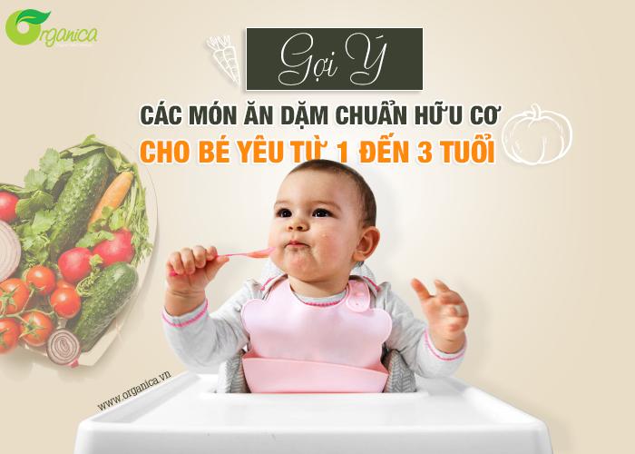 Gợi ý các món ăn dặm chuẩn hữu cơ cho bé yêu từ 1-3 tuổi