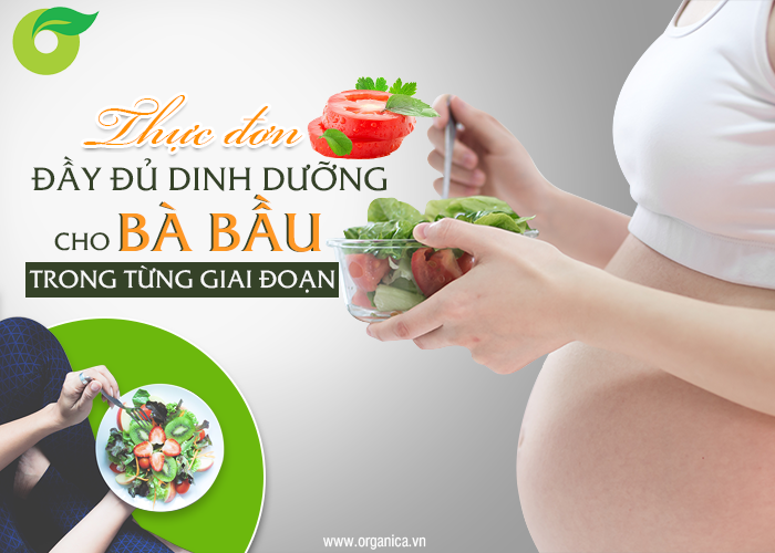 Thực đơn đầy đủ dinh dưỡng cho bà bầu trong từng giai đoạn
