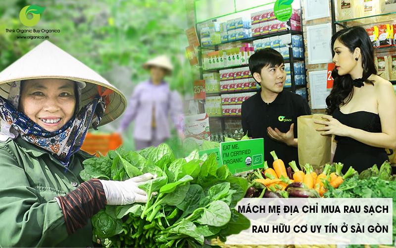 Lựa chọn địa chỉ mua rau hữu cơ uy tín và chất lượng tại Sài Gòn Và Hà Nội