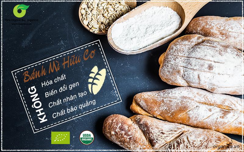 3 lợi ích tuyệt vời khi sử dụng bánh mì hữu cơ bạn nên biết