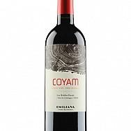 Rượu vang Coyam