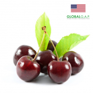 Cherry Mỹ Global Gap